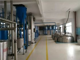 30 TPD Tea Seed Oil Turnkey Project in Hunan