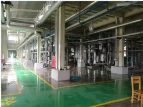 50000 TPY Waste Oil Turnkey Biodiesel Project in Yunnan